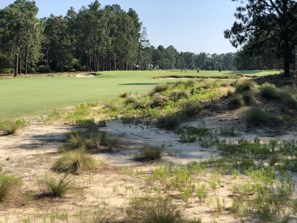 Pinehurst Resort No. 2 Course - First Hole